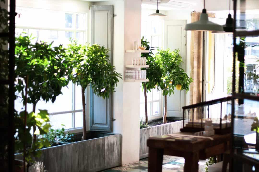 rose et marius a brand born of precious memories. Black Bedroom Furniture Sets. Home Design Ideas